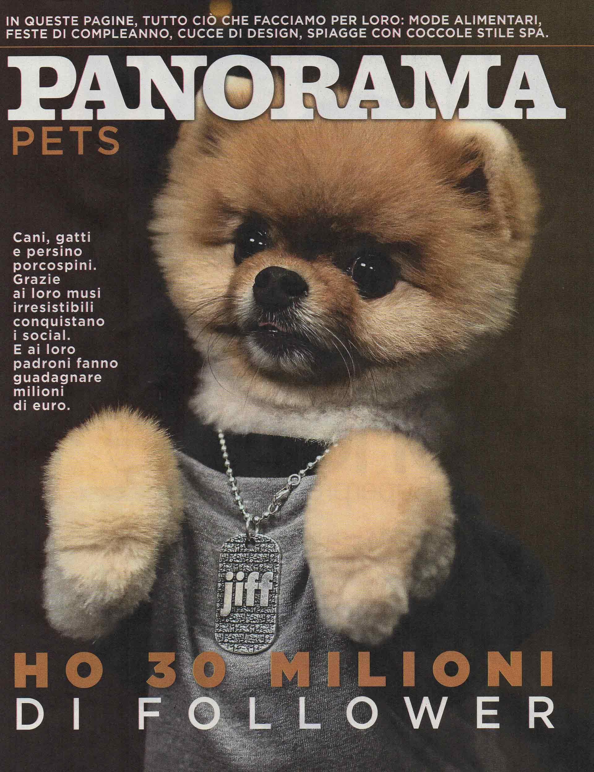panorama-rivista-bauclub-asilo-educazione-cani-milano-01