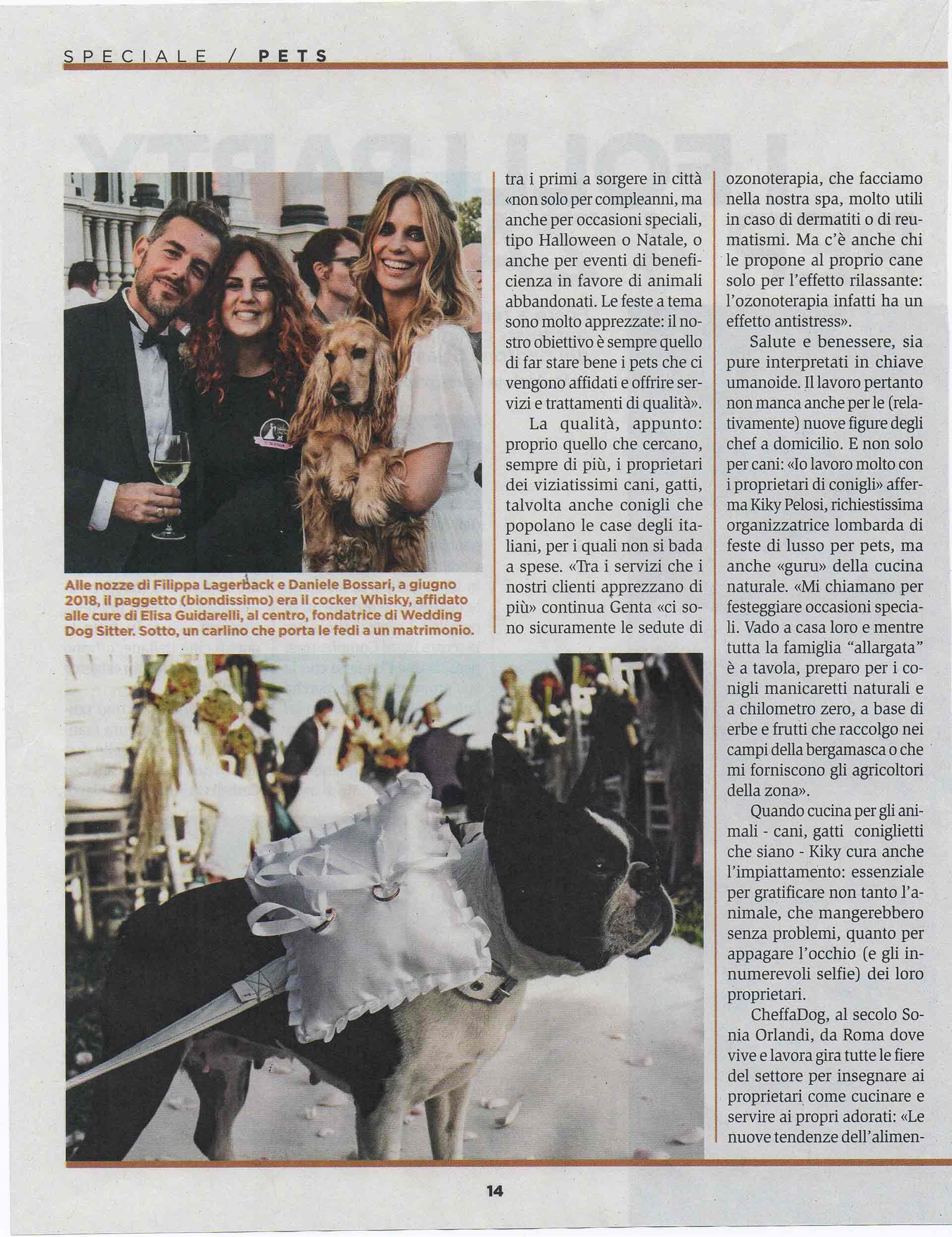 panorama-rivista-bauclub-asilo-educazione-cani-milano-03