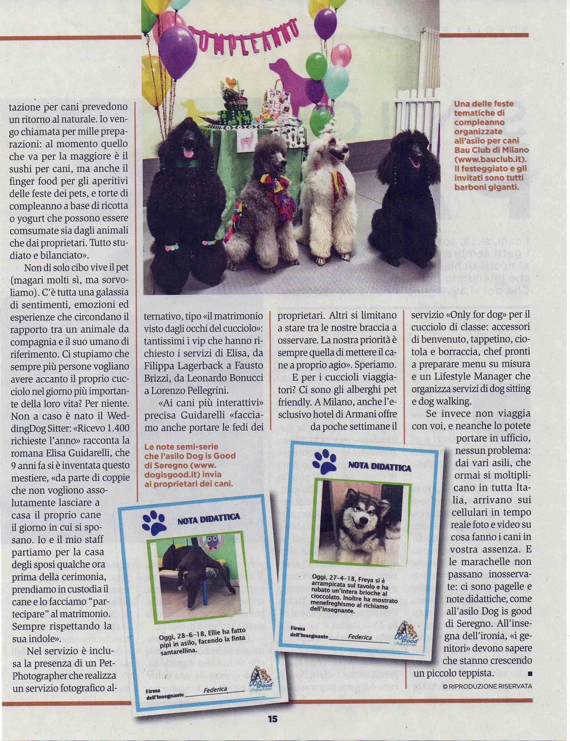 panorama-rivista-bauclub-asilo-educazione-cani-milano-04