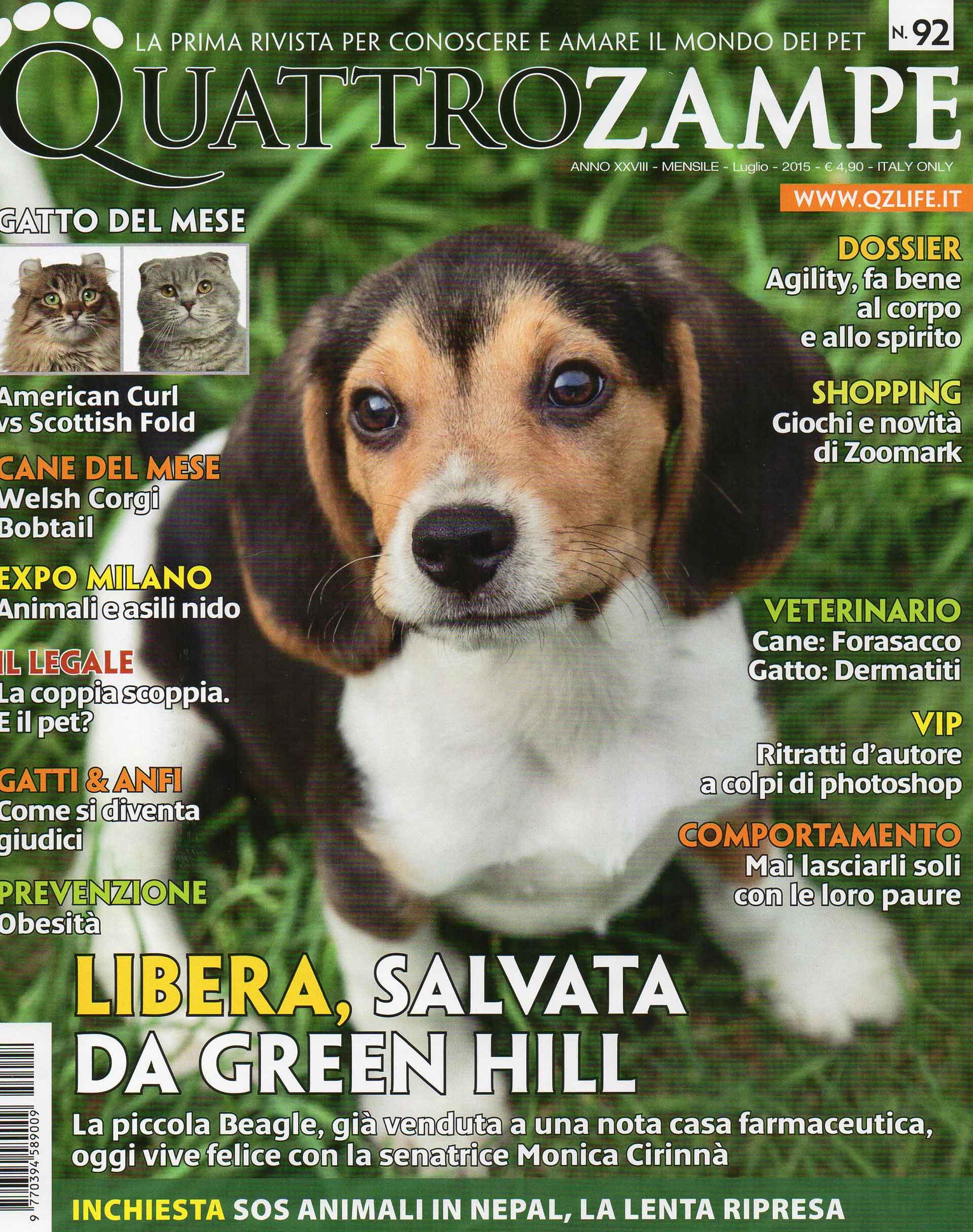 quattro-zampe-bauclub-asilo-educazione-cani-milano-01