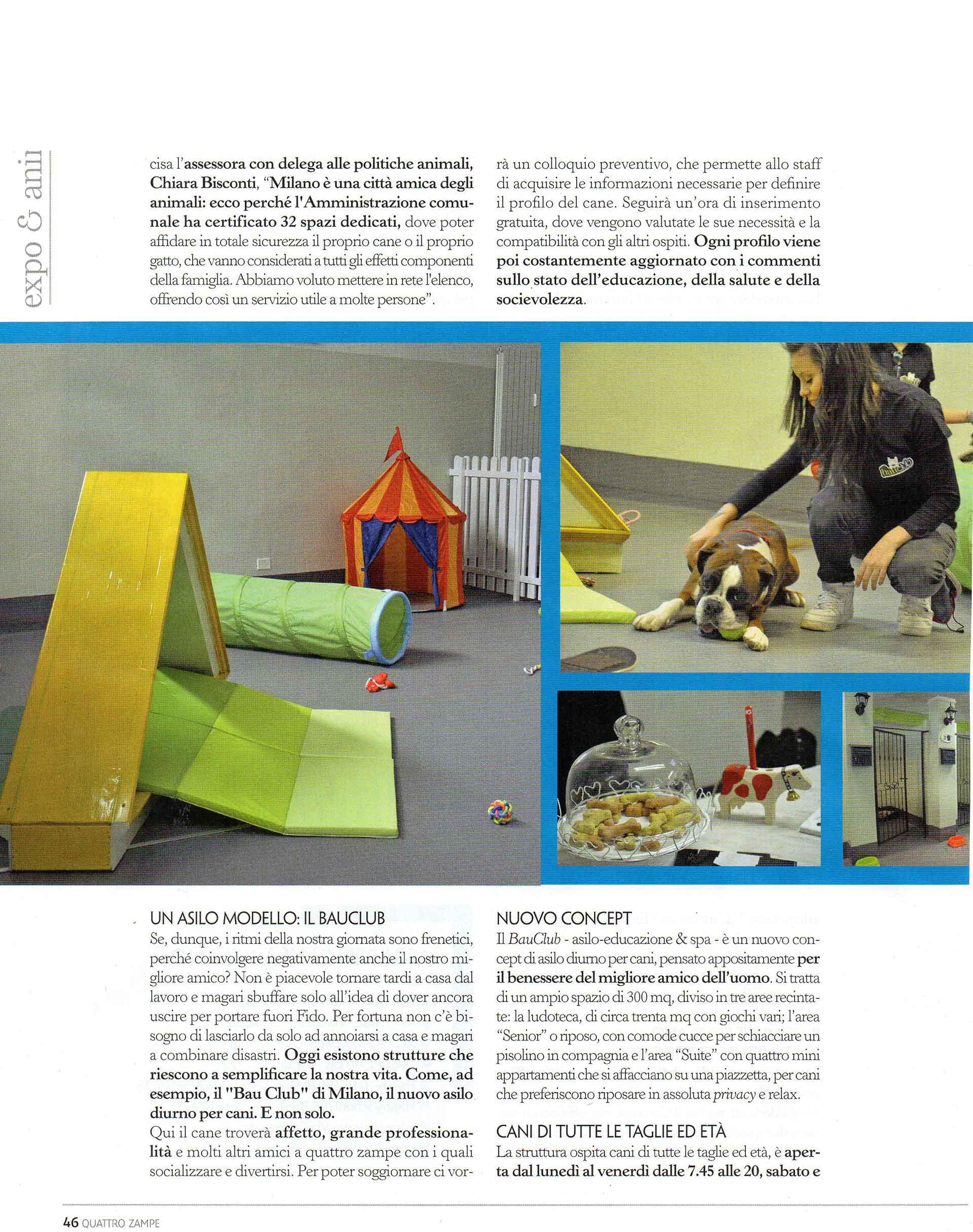 quattro-zampe-bauclub-asilo-educazione-cani-milano-04